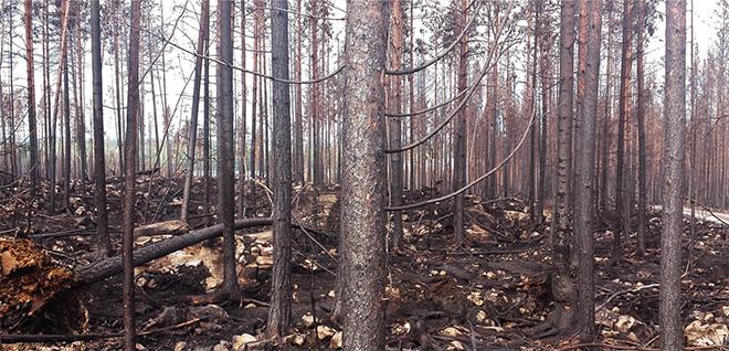Branden bedöms vara under kontroll måndagen den 11 augusti.